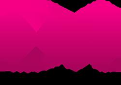 DA.MI Logo